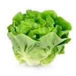 Trocadero Salat